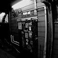 新宿グラフティー