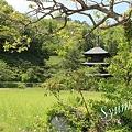 写真: 安久津八幡神社 三重塔