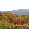 Photos: 岩手県八幡平の紅葉・5