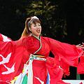 写真: 疾風乱舞_26 - 原宿表参道元氣祭 スーパーよさこい 2011