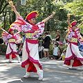 勇舞会_07 -  「彩夏祭」 関八州よさこいフェスタ 2011