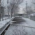 写真: 雪の桃花台中央公園_03