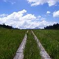 天空へ続く道