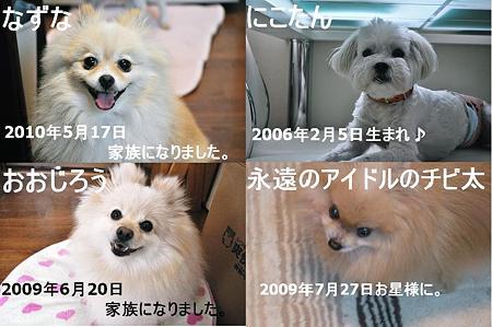DSC_0727112