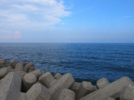 2色の海とウミネコ