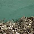 写真: 透き通った海ビーチの