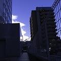 Photos: 2010-08-31の空