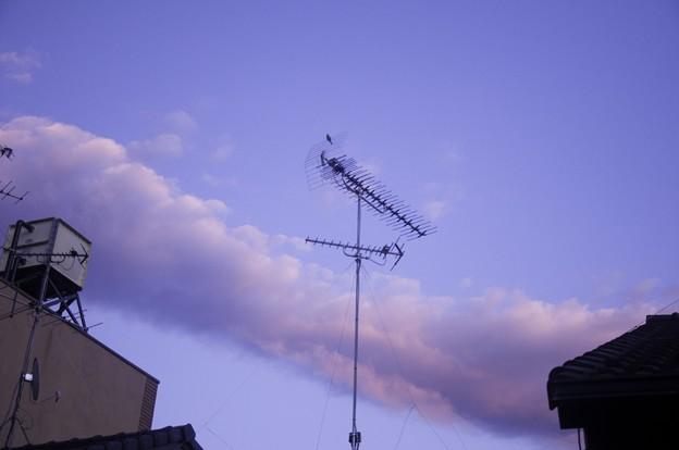 Photos: 2011-07-17の空