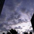 写真: 2011-08-17の空