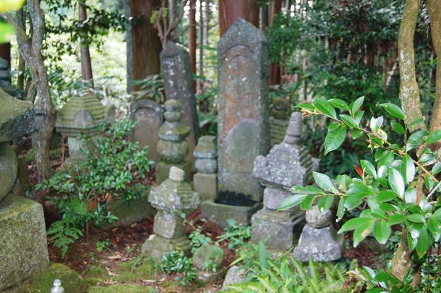 2010年08月15日_DSC_0355多田来迎寺