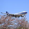 写真: Narita International Airport NCA 747-400F