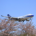 Narita International Airport NCA 747-400F