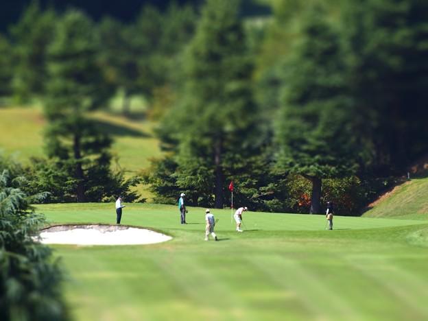 写真: ジオラマ ゴルフ