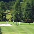 Photos: ジオラマ ゴルフ