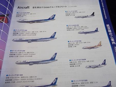 619-ANA_planes