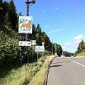Photos: 野上峠