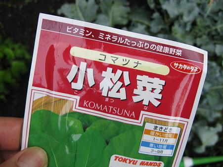 小松菜 種 袋