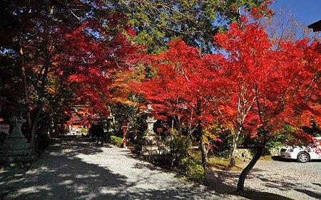 大原野神社25