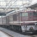 Photos: 臨時快速ELレトロ碓氷号 EF64-1001+旧型客車4両+EF65-501