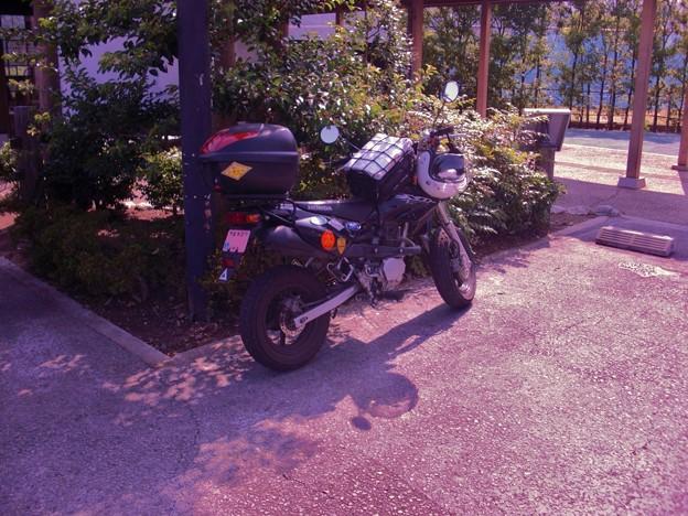 今帰りさ!九州廻って来たんだよ。in関宿ドライブイン