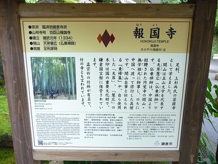 110627-報国寺 (1)