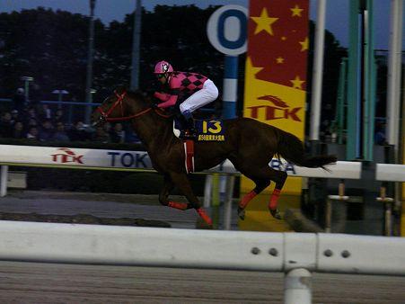 東京大賞典勝ち馬 スマートファルコン(武豊)
