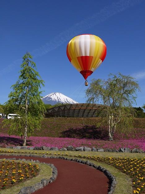 富士山と気球と花壇と