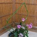 Photos: My Ikebana work