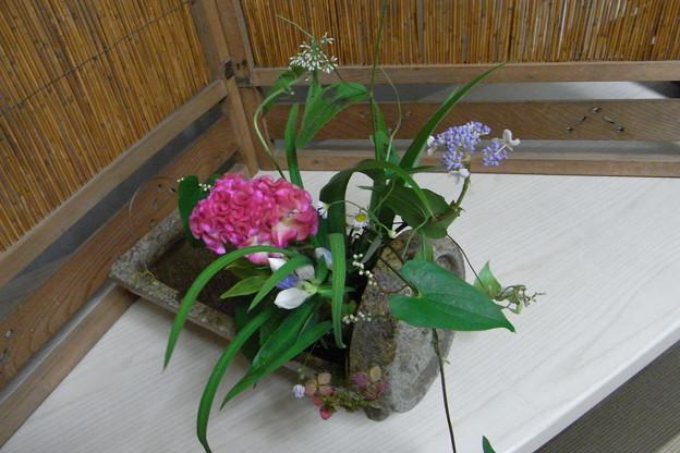 Photos: 伊賀焼にいける アップ