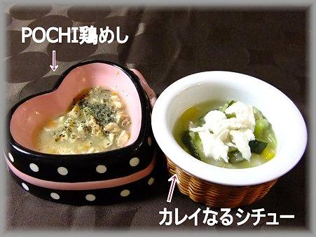 peccoめし (2)
