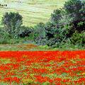 春のクルミリ山地