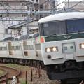 Photos: 185系 団体臨時列車
