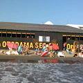 写真: 逗子海岸なう。音霊激写!