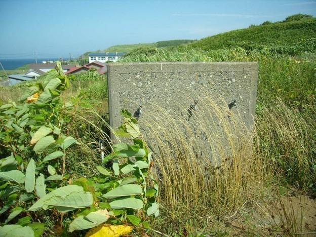 写真: 8_11焼尻島小中学校グランド跡地02