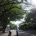 Photos: いいお天気の公園気持ちよい(*´`*)ちびっこと遊びたい!