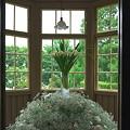 写真: 2011.06.12 山手 外交官の家  花と器のハーモニー