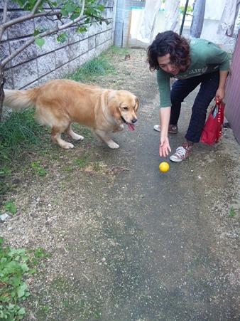 庭でボール遊びも楽しんで