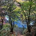 Photos: 101119-108多摩川