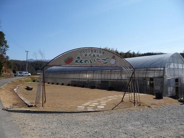 2011/02/26 森のいちご (香川県三木町)