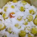 Photos: 漬物用ビニール袋で5kg
