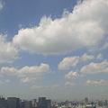 1109071216.東京...