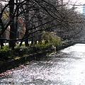Photos: 高瀬川