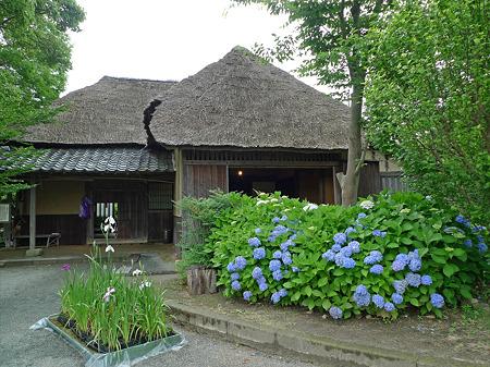 雨の宮地嶽神社(10)