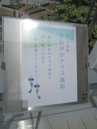 20100808 023