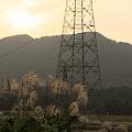 夕日と鉄塔とススキ