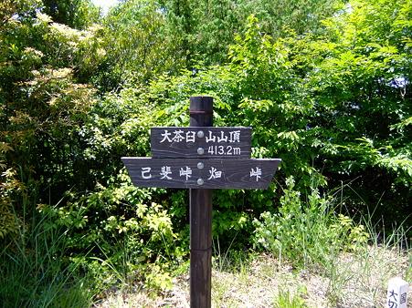 大茶臼山山頂