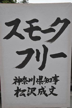 ぼんぼり祭り2010 09
