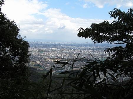 20101010 甲山森林公園033