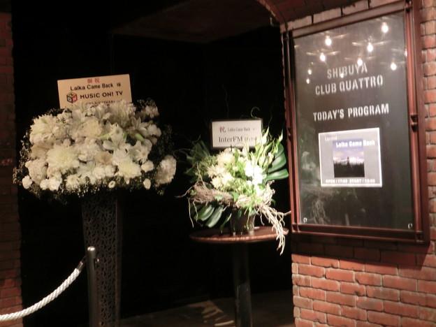 Photos: 2011.09.19渋谷CLUB QUATTRO